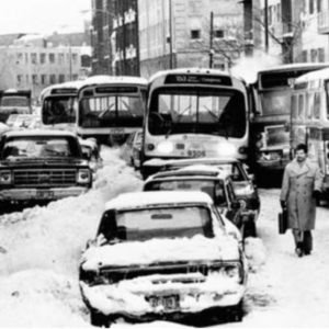 HOLY COW! History: Ted Cruz Wasn't The First Politician Hurt by a Blizzard