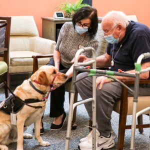 Witnesses Find Comfort In a Cold Nose and Warm Paws at County Courthouse