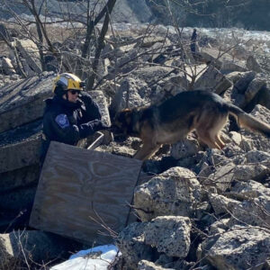 Bucks County Dog Trainer Tells of Experiences at Florida Condo Collapse Site